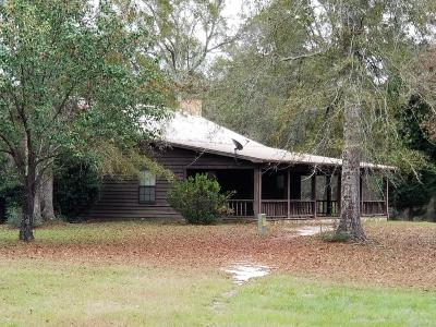 Hattiesburg Single Family Home For Sale: 3592 S Us Hwy 49