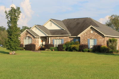 Petal MS Single Family Home For Sale: $204,900