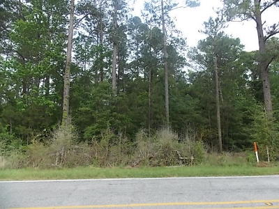 Sumrall Residential Lots & Land For Sale: 1361A Oloh Rd