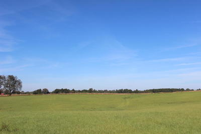 Seminary, Sumrall Residential Lots & Land For Sale: 82 Acres Hwy 42