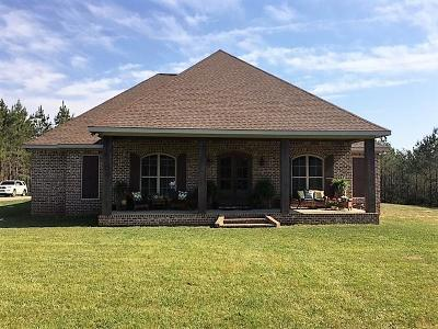 Sumrall Single Family Home For Sale: 489 Lott Town Rd.