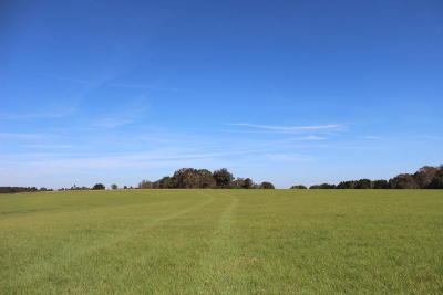 Seminary, Sumrall Residential Lots & Land For Sale: 10 Acres Hwy 42