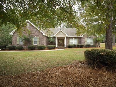 Dandridge Single Family Home For Sale: 164 Red Roan Rd.
