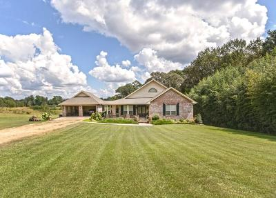 Sumrall Single Family Home For Sale: 198 N County Line Rd.