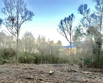 Seminary, Sumrall Residential Lots & Land For Sale: Hwy 44