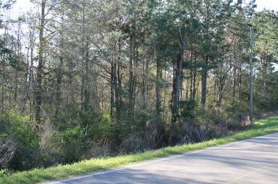 Seminary, Sumrall Residential Lots & Land For Sale: 3830 Rocky Branch Rd.