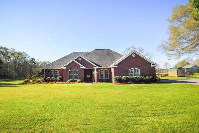 Petal, Purvis Single Family Home For Sale: 263 Mitchell Rd.
