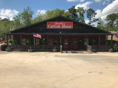 Seminary, Sumrall Commercial For Sale: 1060 Ms-42