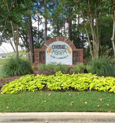 Hattiesburg Single Family Home For Sale: Chandeleur- Canebrake Lot