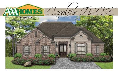 Petal Single Family Home For Sale: 48 Cambrian