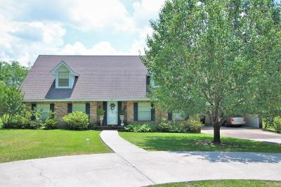 Hattiesburg Single Family Home For Sale: 3116 Luper Dr.