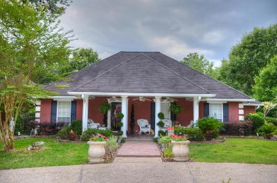 Sumrall Single Family Home For Sale: 4519 Ms-589