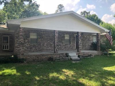 Hattiesburg Single Family Home For Sale: 45 A C Jones