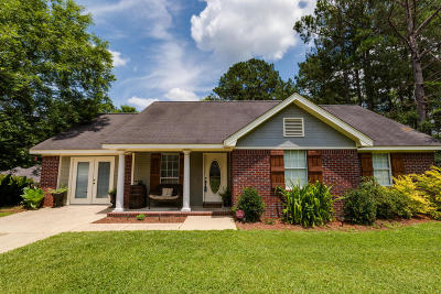 Sumrall Single Family Home For Sale: 46 N Mill St.