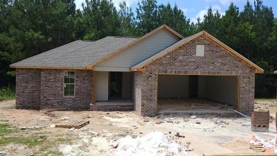 Sumrall Single Family Home For Sale: 132 Hemingway Dr.
