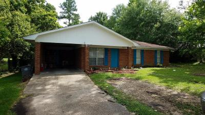 Hattiesburg Single Family Home For Sale: 24 River Rd.