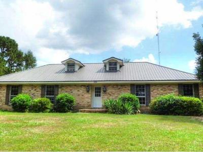 Hattiesburg Single Family Home For Sale: 1151 Richburg