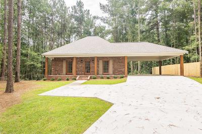 Sumrall Single Family Home For Sale: 61 Higgins Rd.