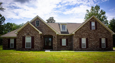 Hattiesburg Single Family Home For Sale: 36 Cameron Jayce Dr.
