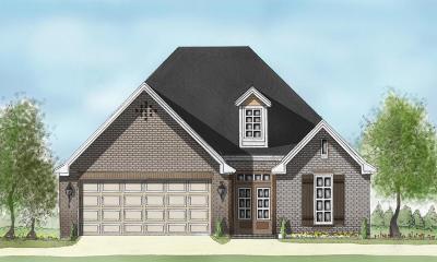 Hattiesburg Single Family Home For Sale: 23 Avondale Cir.