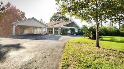 Hattiesburg Single Family Home For Sale: 75 Elks Lake Rd.