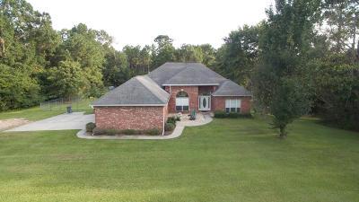 Hattiesburg Single Family Home For Sale: 40 Deer Hollow