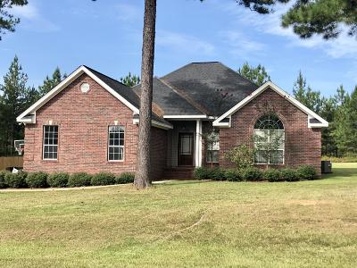Dandridge Single Family Home For Sale: 20 Travertine