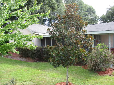Petal MS Single Family Home For Sale: $47,500