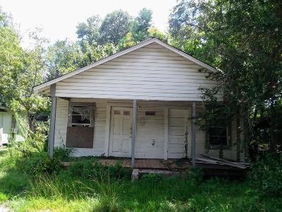 Hattiesburg Single Family Home For Sale: 307 Willis
