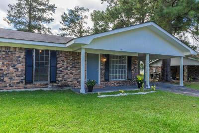 Hattiesburg Single Family Home For Sale: 207 Glenhaven Cir.