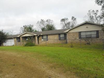 Hattiesburg Single Family Home For Sale: 73 Ed Wiggins Rd.