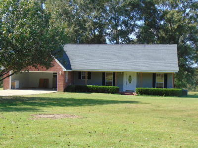 Sumrall Single Family Home For Sale: 315 Old Salt Rd.