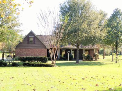 Purvis, Sumrall Single Family Home For Sale: 2509 Purvis Columbia Rd.