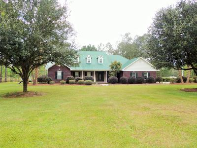 Petal, Purvis Single Family Home For Sale: 1551 Purvis Baxterville Rd.