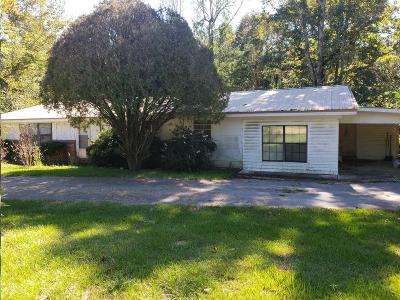 Covington County Single Family Home For Sale: 256 Ramsey McQueen Rd.