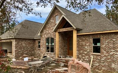 Sumrall Single Family Home For Sale: 16 E Crockett