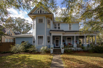 Hattiesburg Single Family Home For Sale: 401 Bay St.