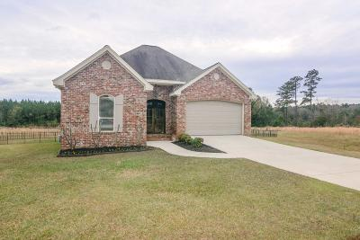 Sumrall Single Family Home For Sale: 19 Charbonneau