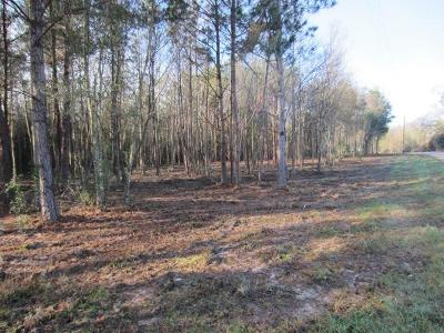Sumrall Residential Lots & Land For Sale: Military (1.11 Ac +/-) Rd.