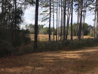 Seminary, Sumrall Residential Lots & Land For Sale: Porter Hudson