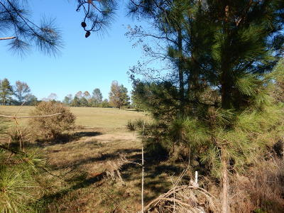 Collins Residential Lots & Land For Sale: 105 Jones Chapel Rd.