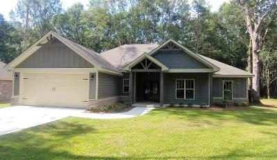 Sumrall Single Family Home For Sale: 124 Todd Rd.