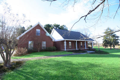 Petal, Purvis Single Family Home For Sale: 217 Coal Town Rd.