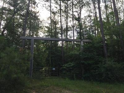 Sumrall Residential Lots & Land For Sale: N Dees Road