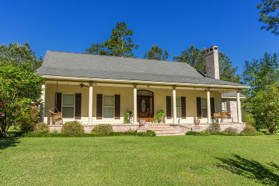Petal, Purvis Single Family Home For Sale: 1717 Hwy 589
