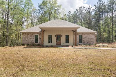 Sumrall Single Family Home For Sale: 55 Higgins Rd.
