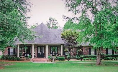 Hattiesburg Single Family Home For Sale: 234 Morrell Cir.