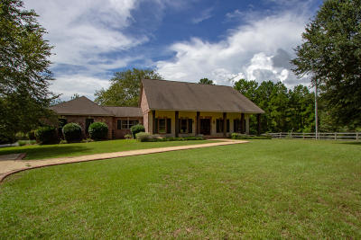 Sumrall Single Family Home For Sale: 193 W M Johnson Rd.