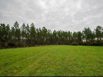 Sumrall Residential Lots & Land For Sale: 591 Scruggs Rd.