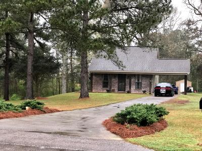Sumrall Single Family Home For Sale: 3837 Rocky Branch Rd.